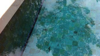 dm-zwembaden-afwerking-inbouw-t-and-a-inbouw-montage-in-de-bodem-voorbeeld-3